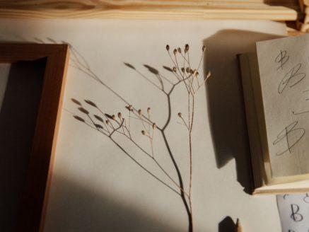 Comment présenter des œuvres d'art dans un book ?