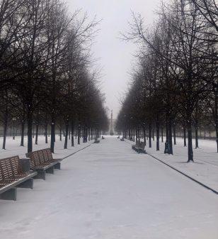 Quand Moscou se confine, faire des choix à l'heure du coronavirus